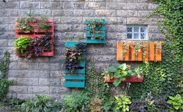 Jardines verticales caseros for Jardines caseros colgantes